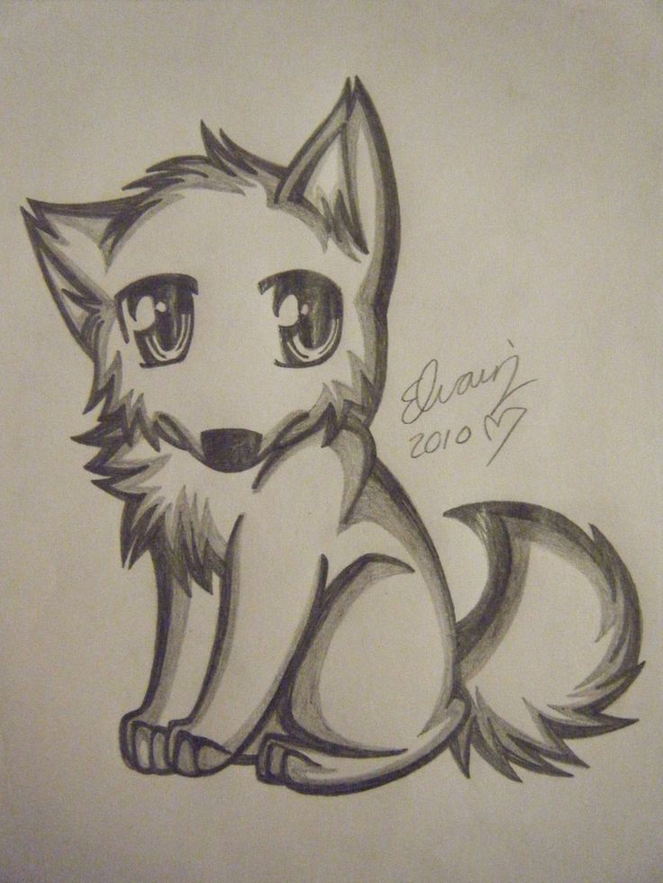 Pencil drawings of anime wolf drawing 4 by animefan1863 traditional art drawings animals 2010