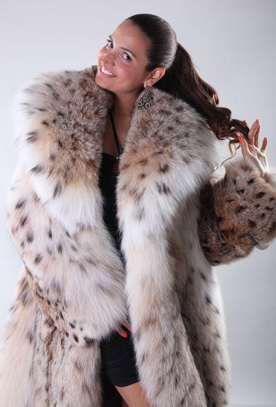 Never tire of this shot... | fur coats | Pinterest | Lynx, Fur ...