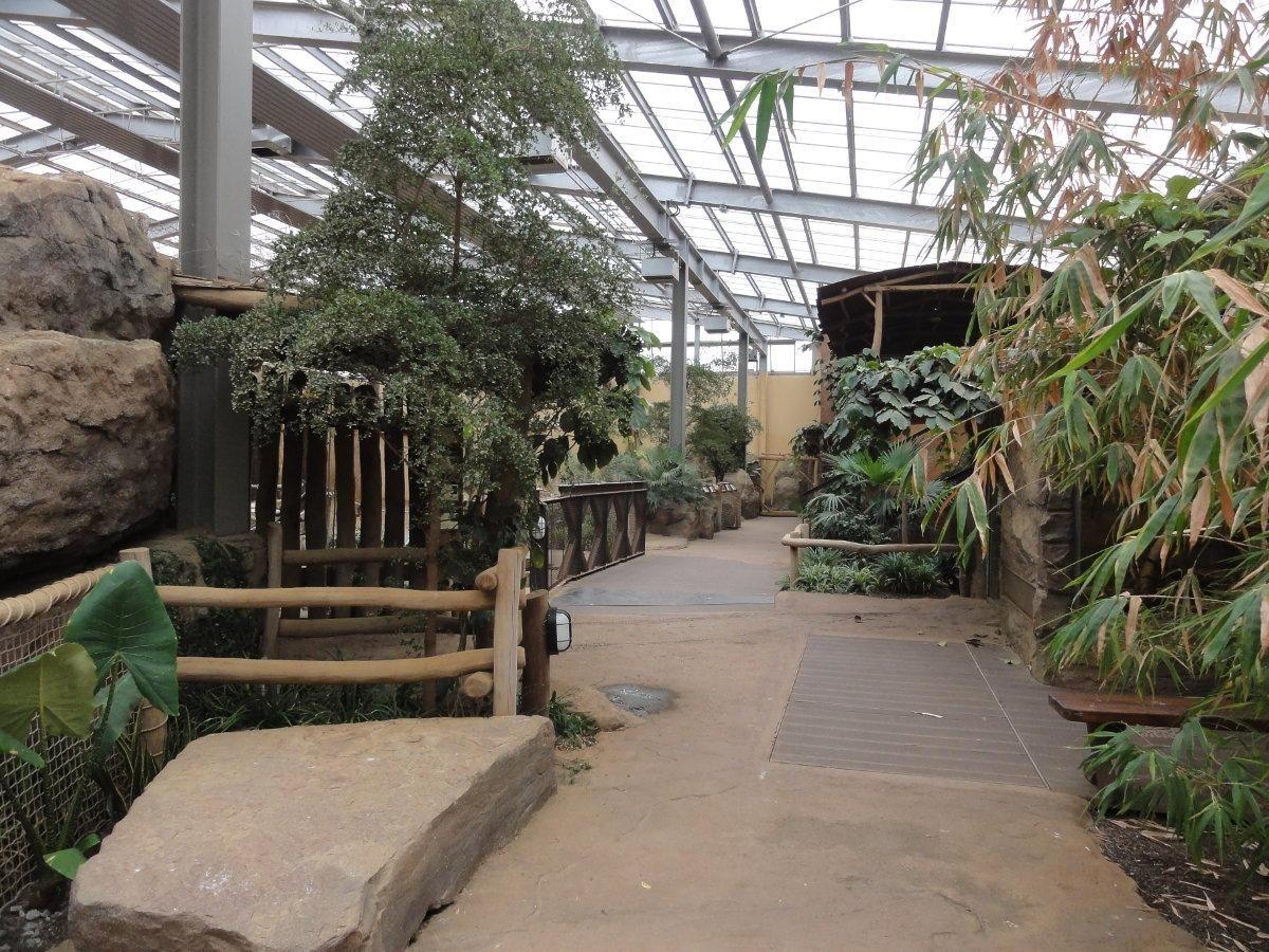Zoologischer Garten Magdeburg Magdeburg Cute Animals Garten
