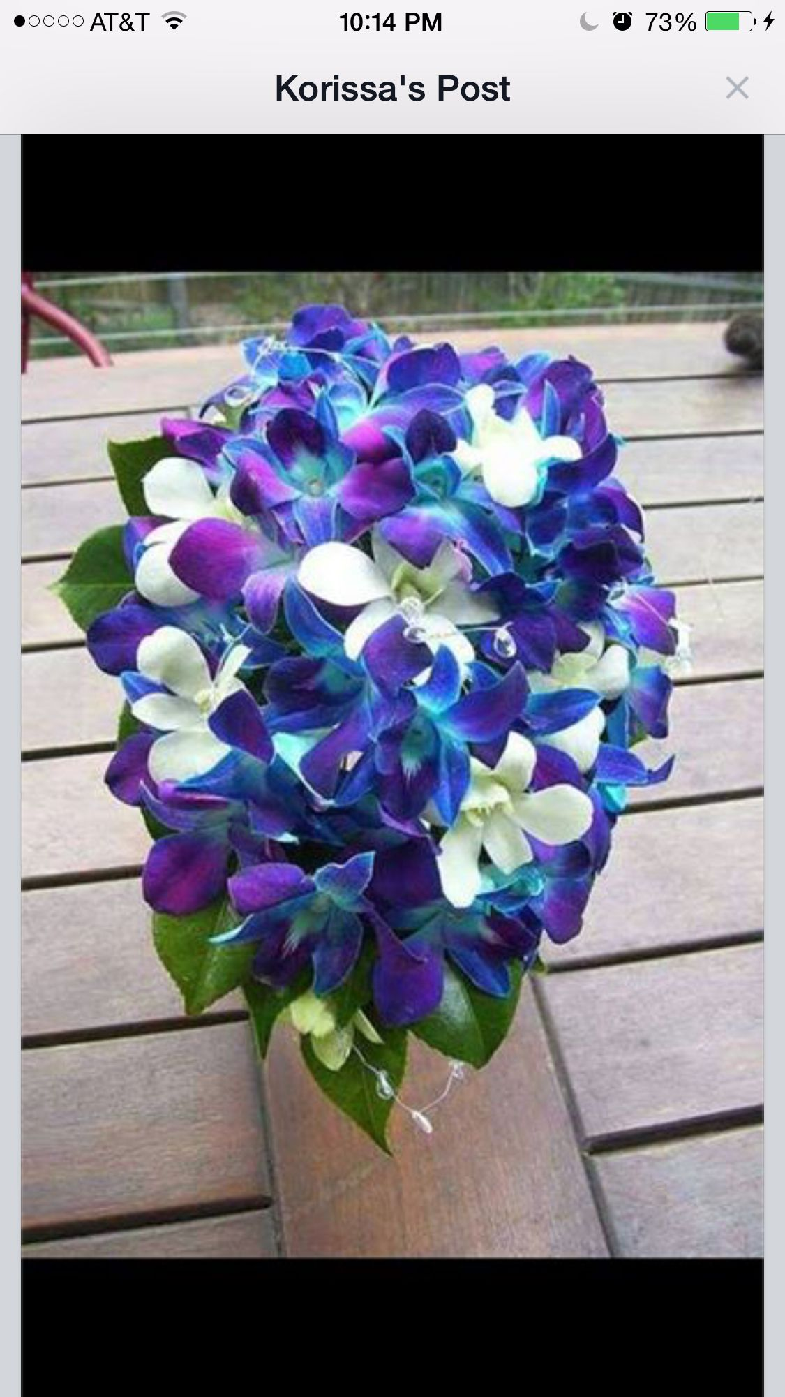 Flowers cassiyeus wedding pinterest flowers and weddings