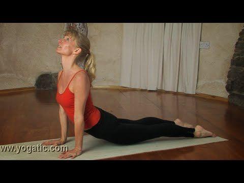 upward facing dog pose / urdhva mukha svanasana yoga  ヨガ ポーズ