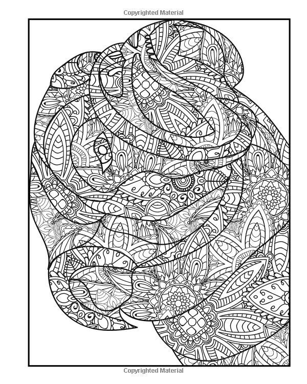 Paisley Pattern Colouring Sheets : Amazon.com: dog coloring book for adults:
