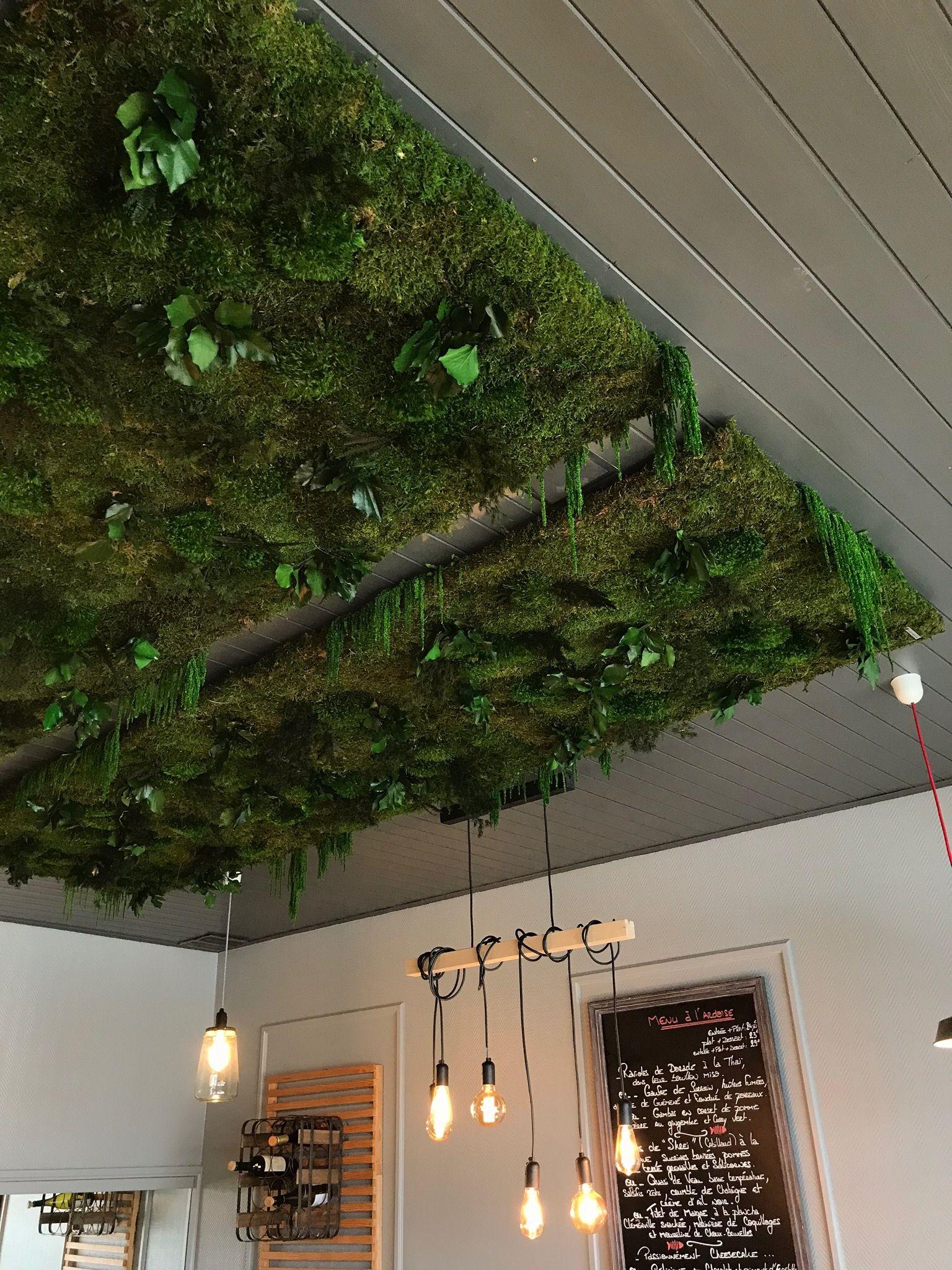 Plantes Pour Tableau Végétal Intérieur plafond végétal | tableau vegetal, tableau végétal stabilisé
