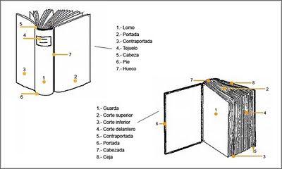 El Libro Y Sus Partes Spanish Books Diy Book Bookbinding