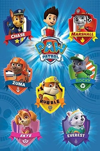 Pin By Gail Head On Kingstons 2nd Paw Patrol Party