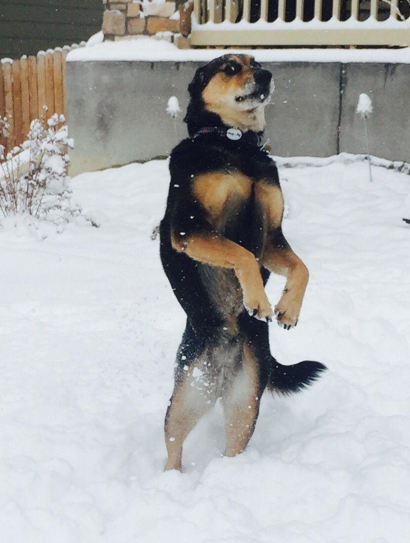Sydney Schultz loving the snow!