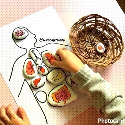 1001 ACTIVIDADES Montessori para casa y clase -Orientacion Andujar