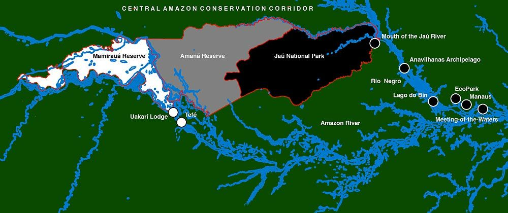 15 Best White Waters & Black The Amazon images