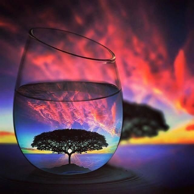 Lone Tree in a Glass - Diamond Painting Kit - Y4555 / 16x16\/40x40cm