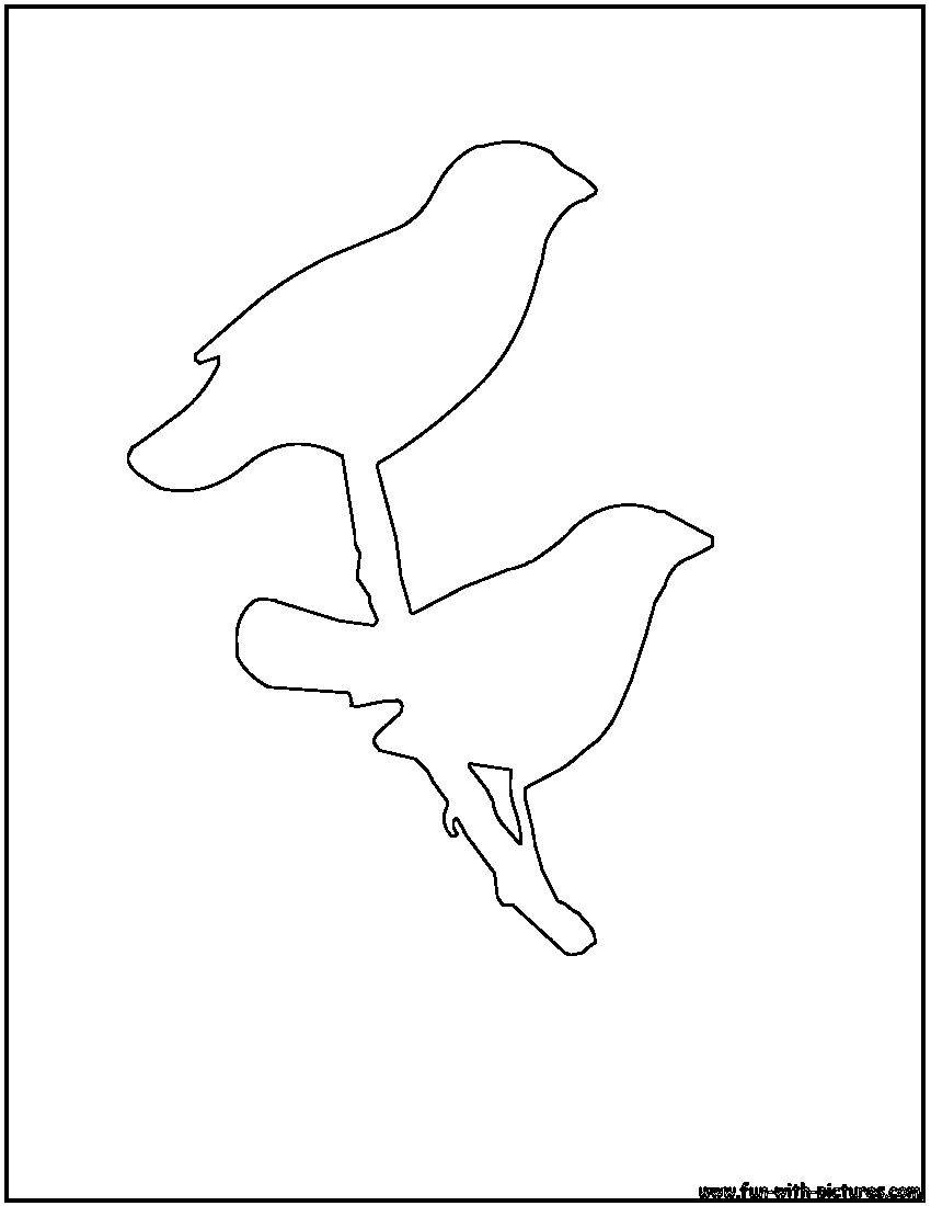 bird outline finch outline coloring page - Picture Outlines For Colouring