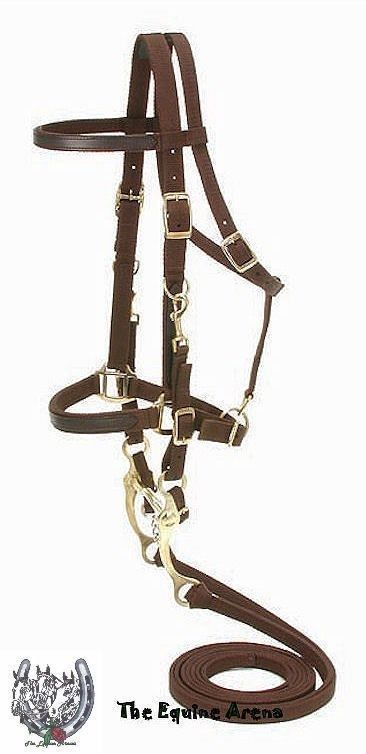 Equestrian Showman BLACK Leather Combination Halter Bridle w/ Reins!! NEW HORSE TACK!!!