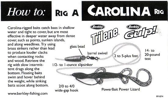 carolina rig basics for deep water bass | all things fishing, Fishing Bait