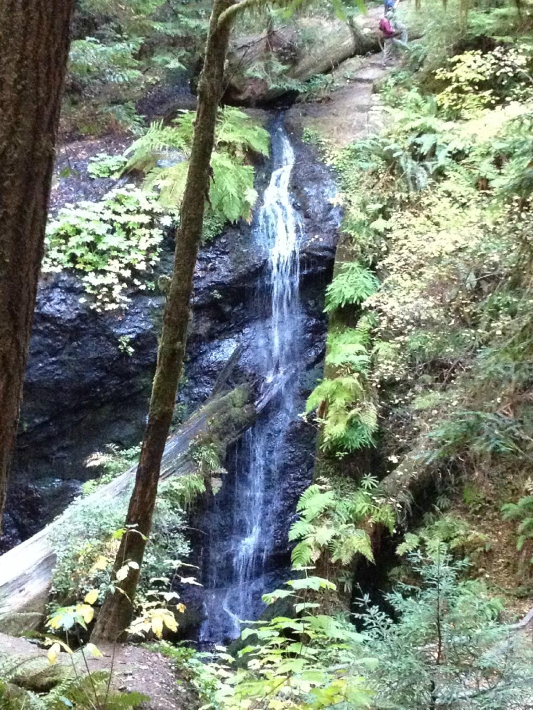 Waterfall hike - Russian Gulch State Park