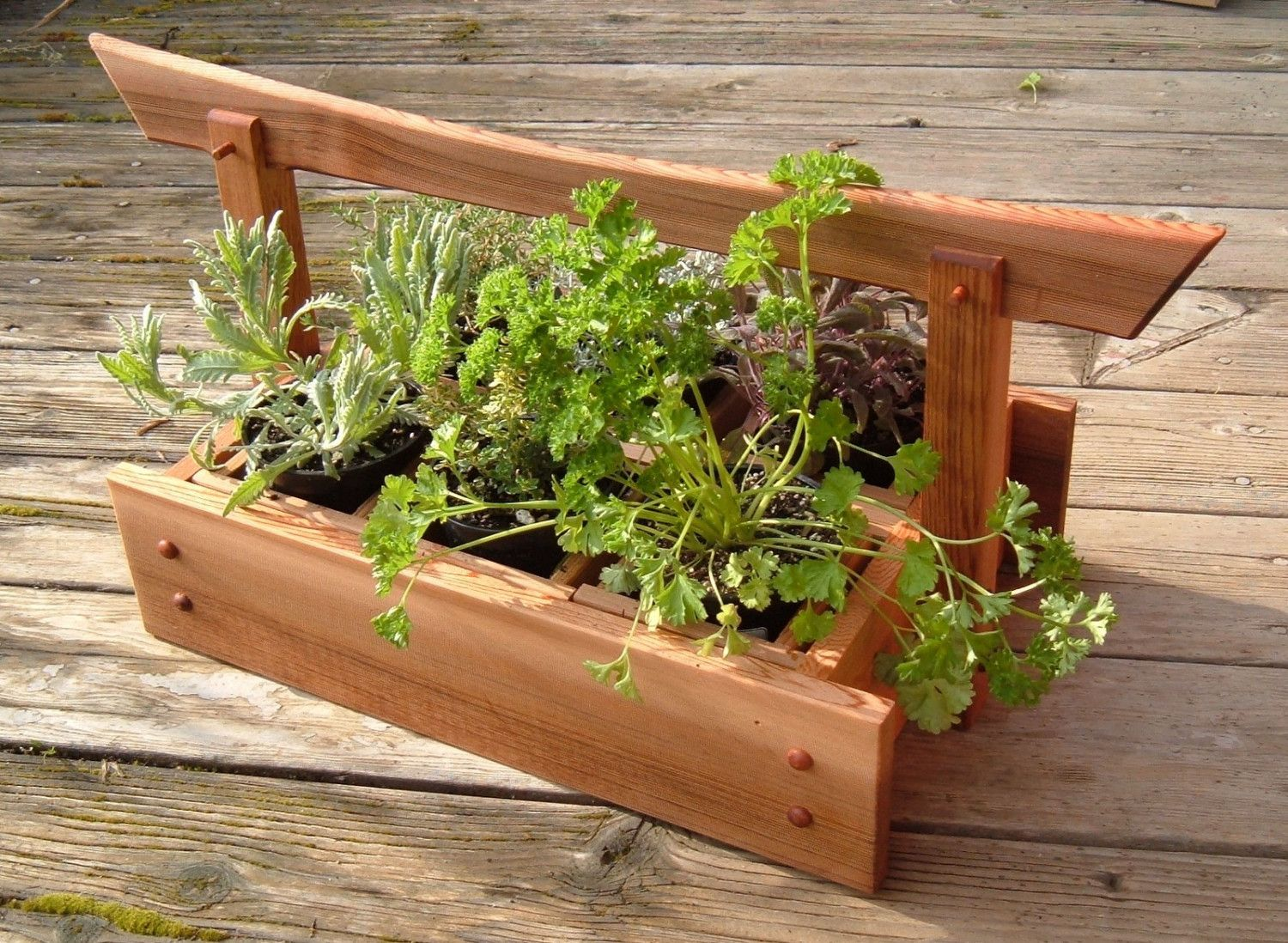 As Seen On Hgtv Japanese Style Western Red Cedar Herb And Plant