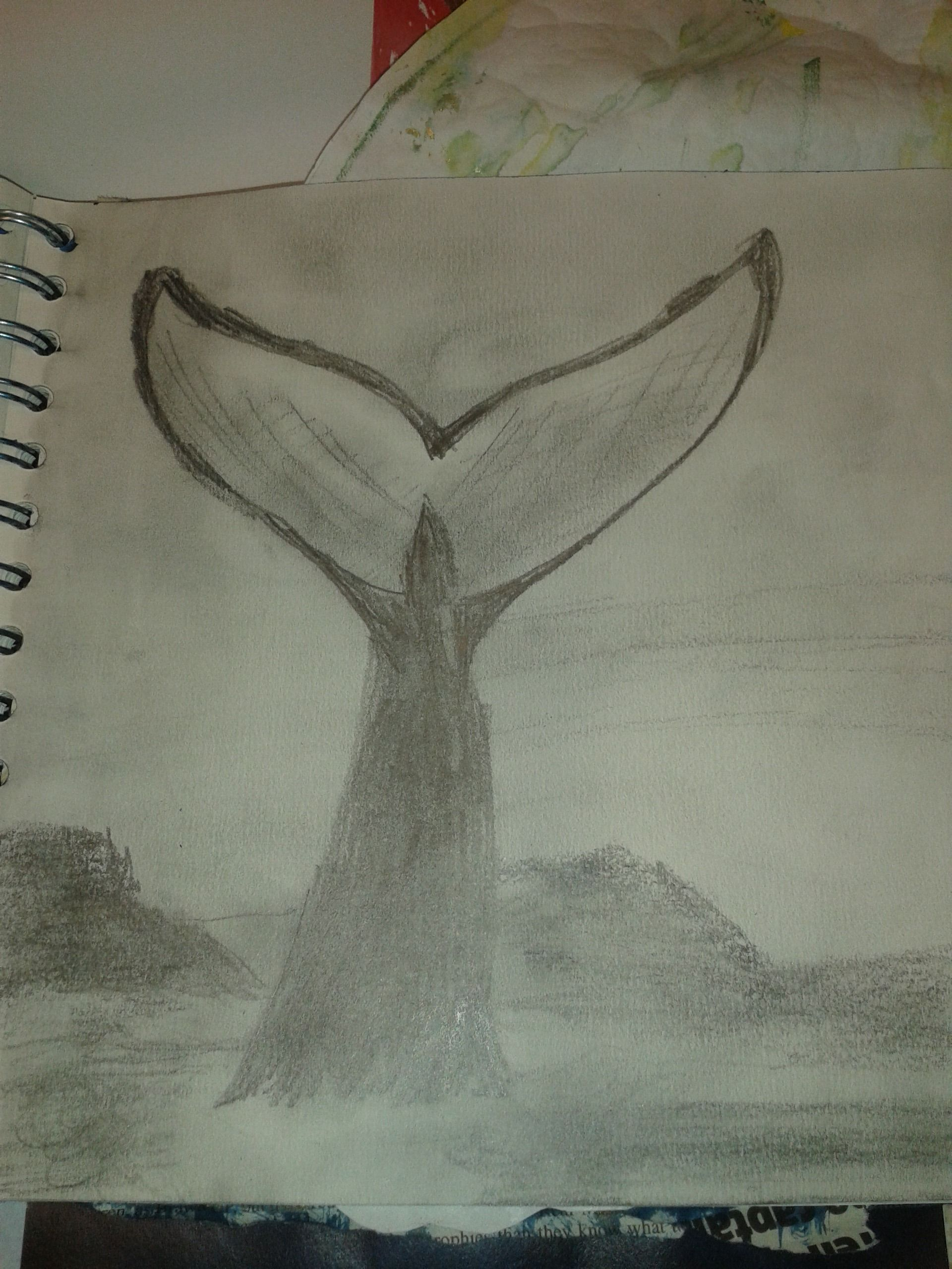 Sketchbook page whale tail pencil drawing ideas for boys rooms