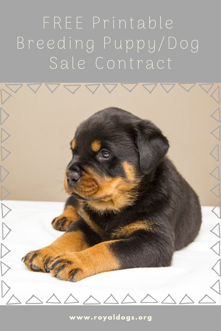 FREE Printable Breeding Puppy/Dog Sale Contract Dogs and