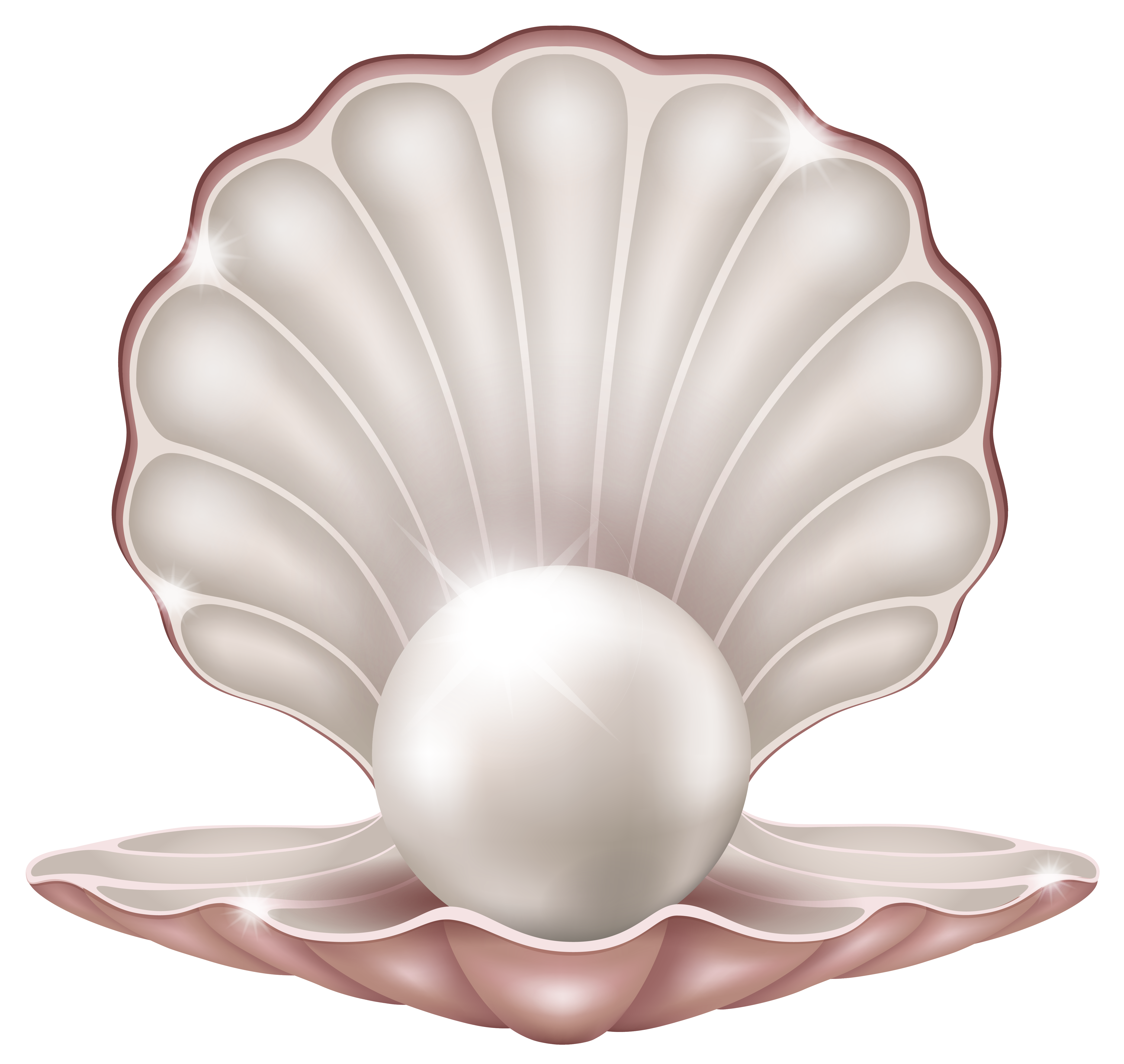 Beautiful Clam With Pearl Png Clipart Image Gallery Yopriceville High Quality Images And Transparent Png Free Clip Silhouette Frames Clipart Images Shells