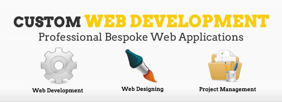 Web Business In Pakistan Custom Web Design Web Development Web Design