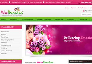 Online Shopping Website >>  Effective programming for beautiful flower delivery site.