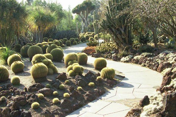 Huntington Desert Garden San Marino California