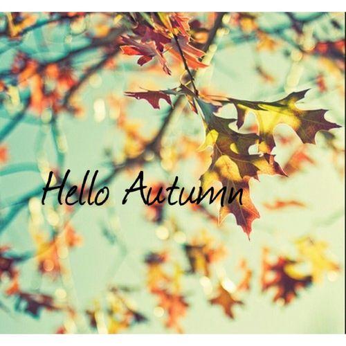 Lovely Autumn · Hello Autumn Quotes ...