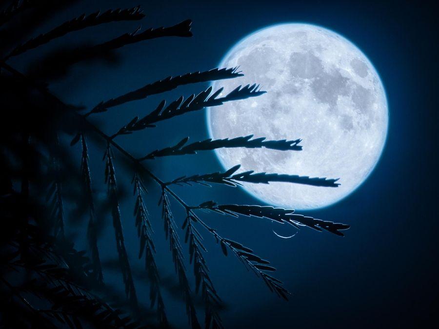 Full Moon by Albert Dros - Photo 46843656 / 500px