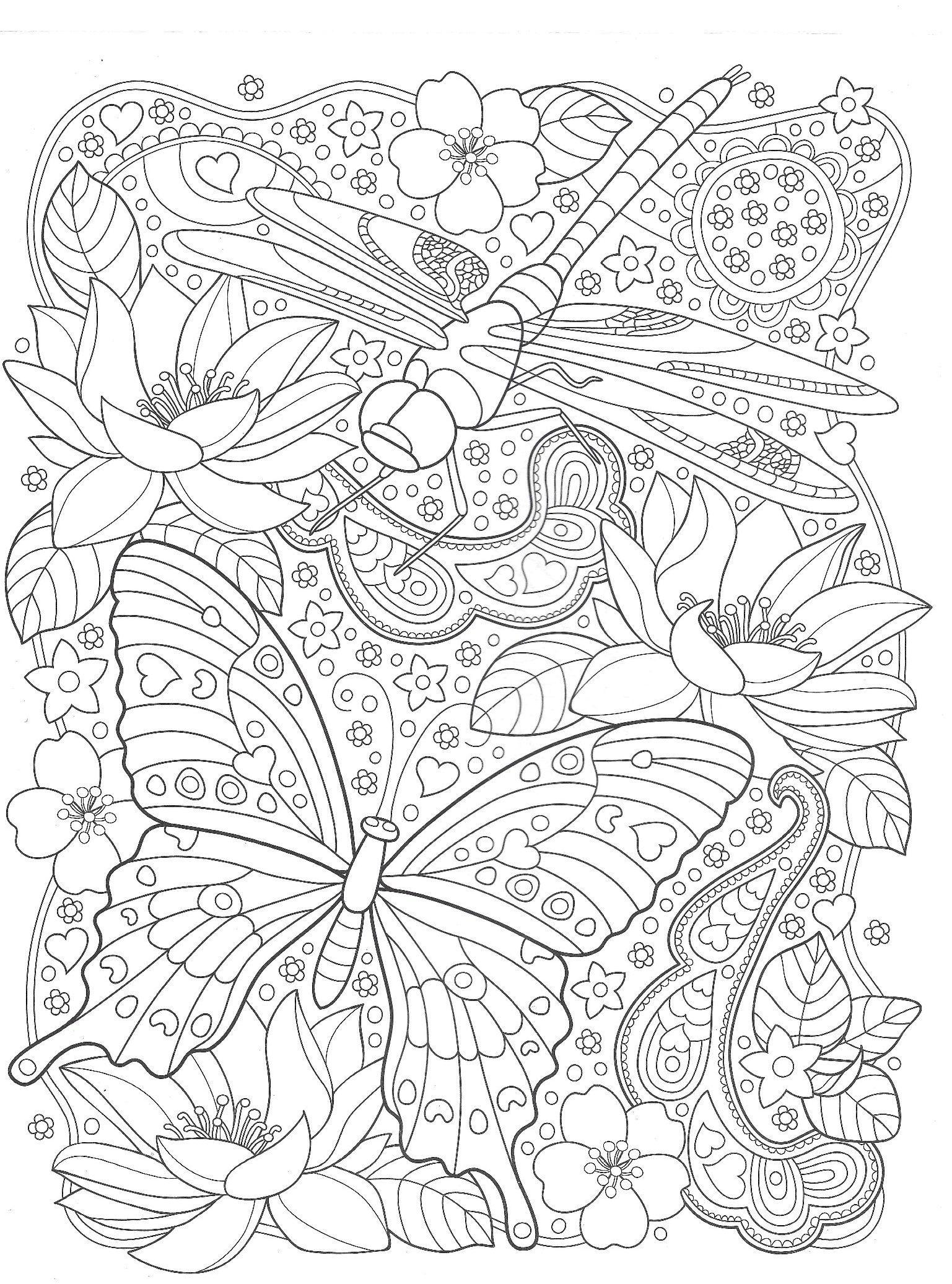 раскраски животные бабочка и стрекоза с цветами