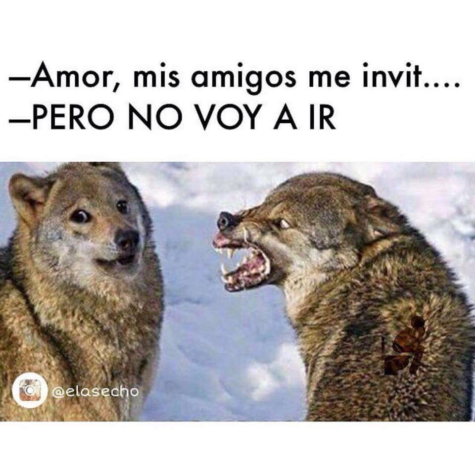 Mandilón Mexicans Mexican Humor Funny Memes