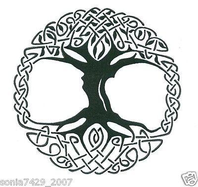Celtic Tree of Life Vinyl Window Sticker Decal Car Wall Irish