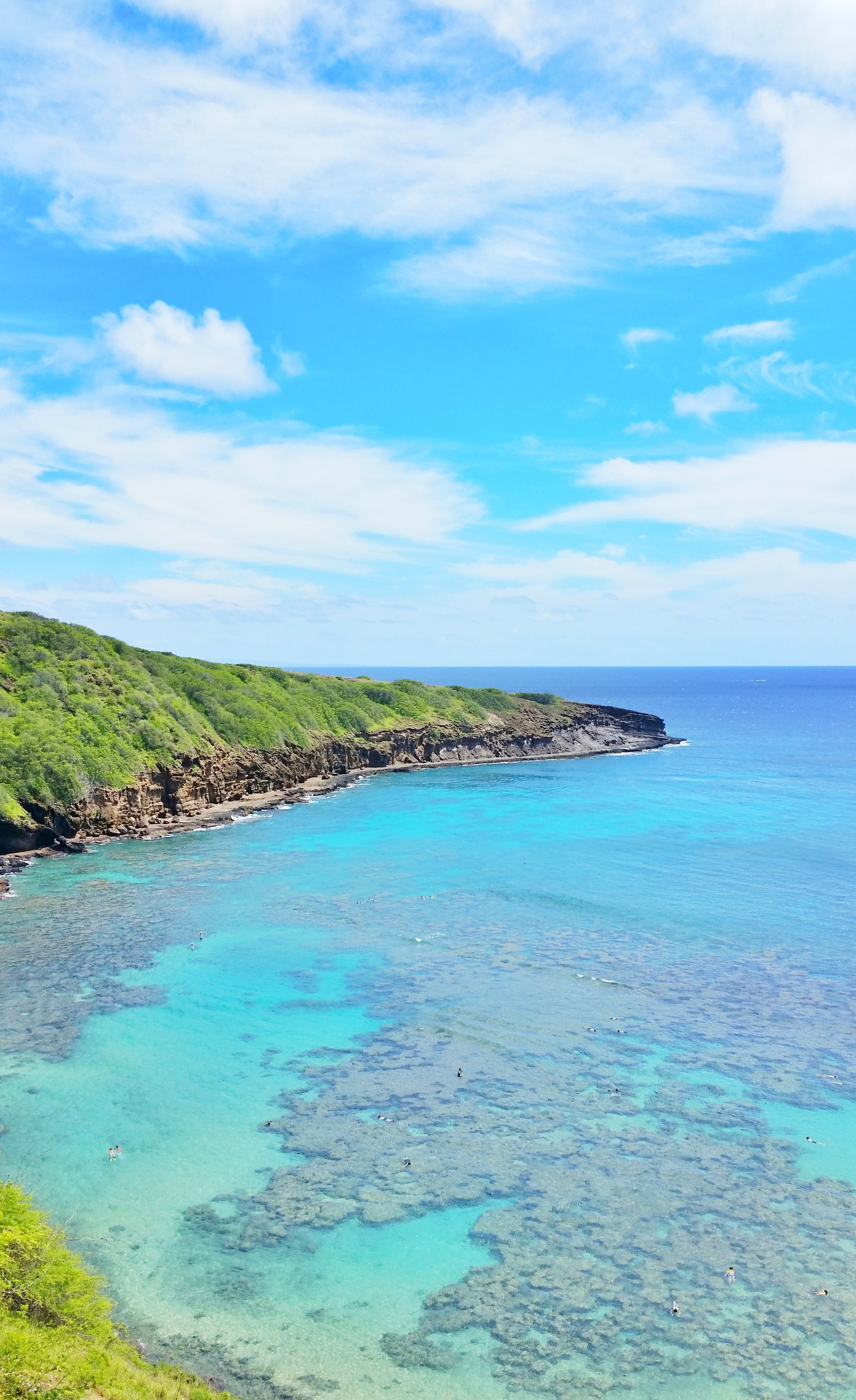 hanauma bay snorkeling faq of best snorkeling spot on oahu