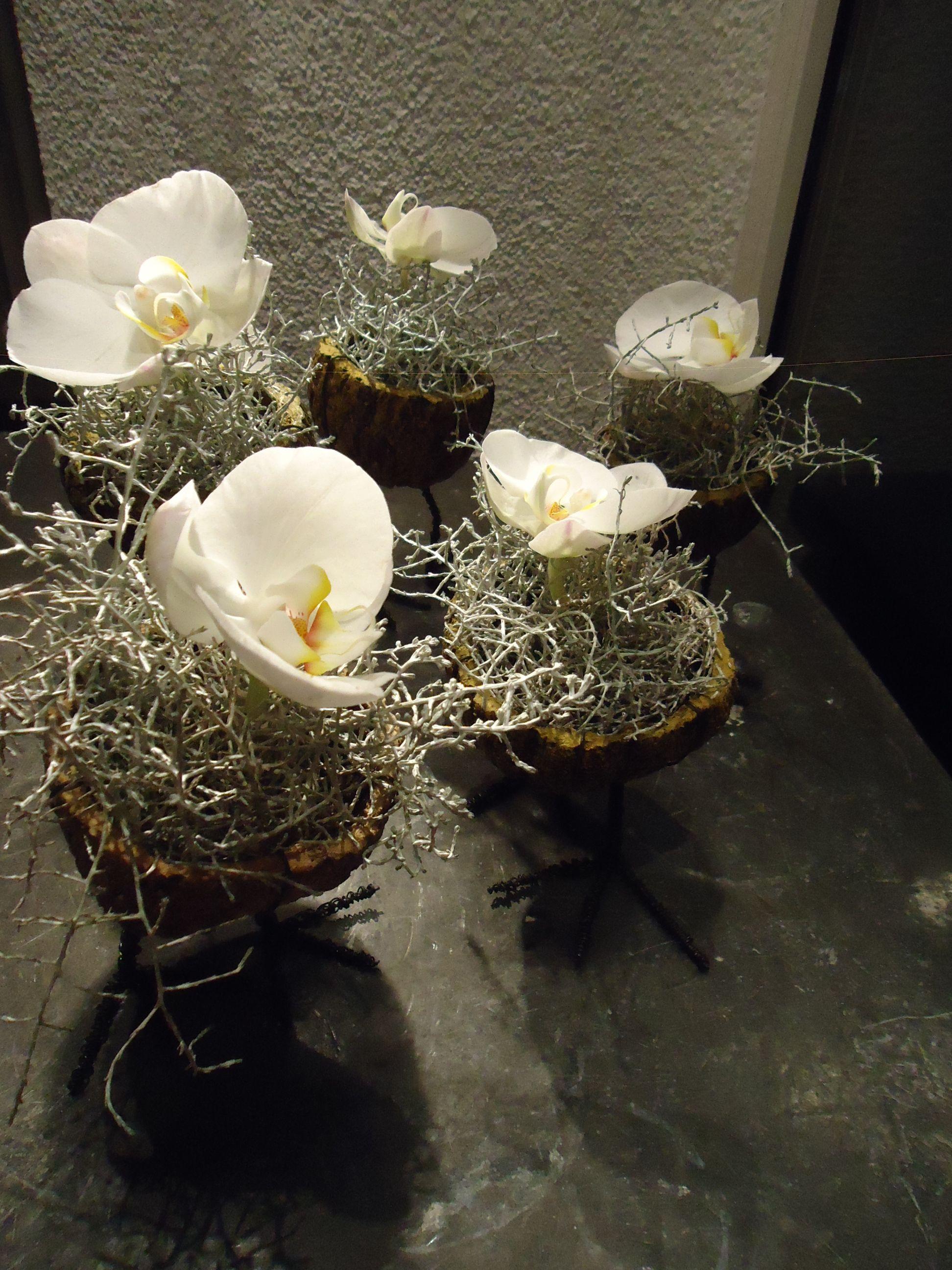 Florale Miniaturen Blumen Renner, Lörrach