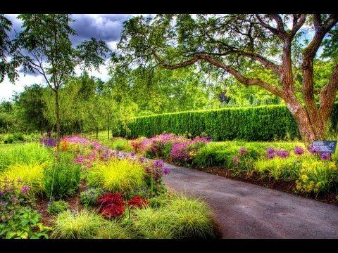 1 Moj Piekny Ogrod Lato Youtube Botanical Gardens Garden Bench Diy Garden Boxes Diy