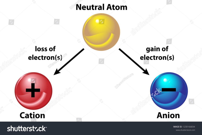 Anion ion