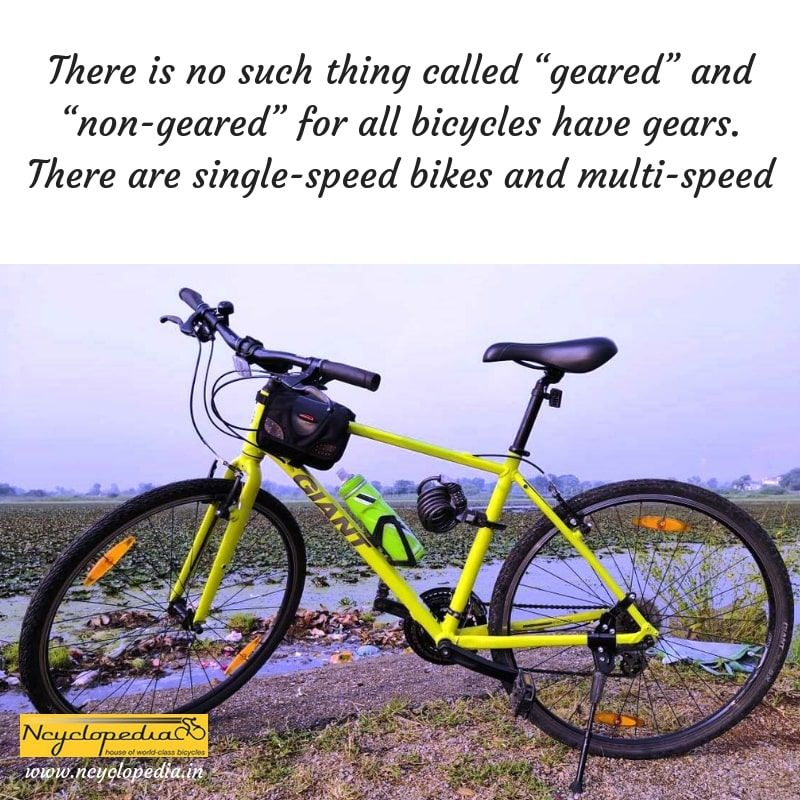 All Bicycles Have Gears They Are Either Single Speed Or Multi