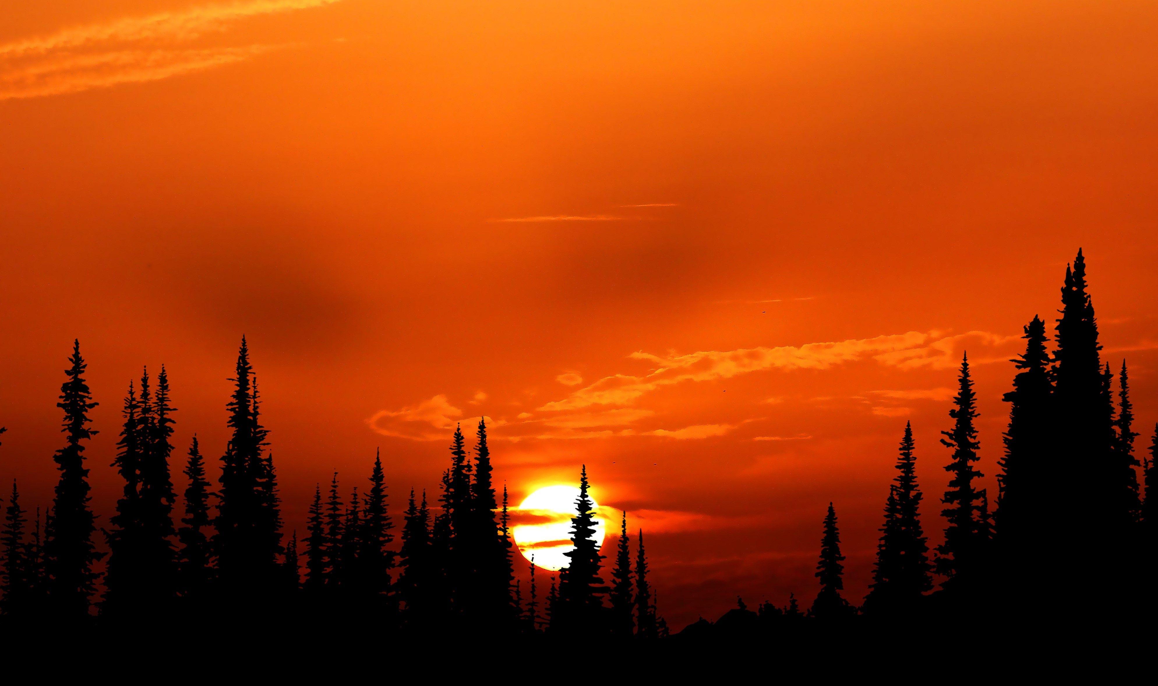 Relaxing Orange Sunset Evening 4k Relaxing Orange Sunset Evening 4k Wallpapers Sunset Nature Sunset Nature