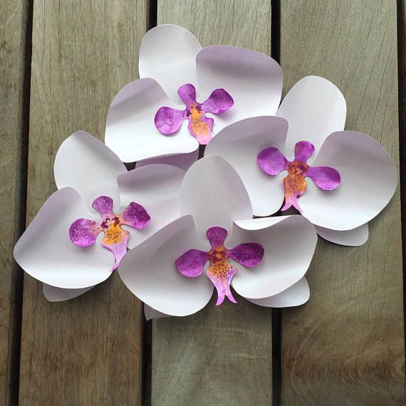 paper flower template paper orchid template flower template