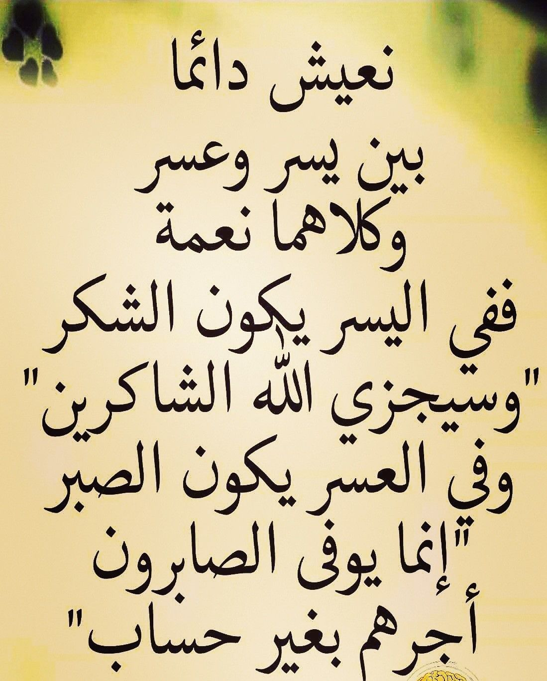 Pin By The Noble Quran On I Love Allah Quran Islam The Prophet Miracles Hadith Heaven Prophets Faith Prayer Dua حكم وعبر احاديث الله اسلام قرآن دعاء Islamic Inspirational Quotes Islam Facts