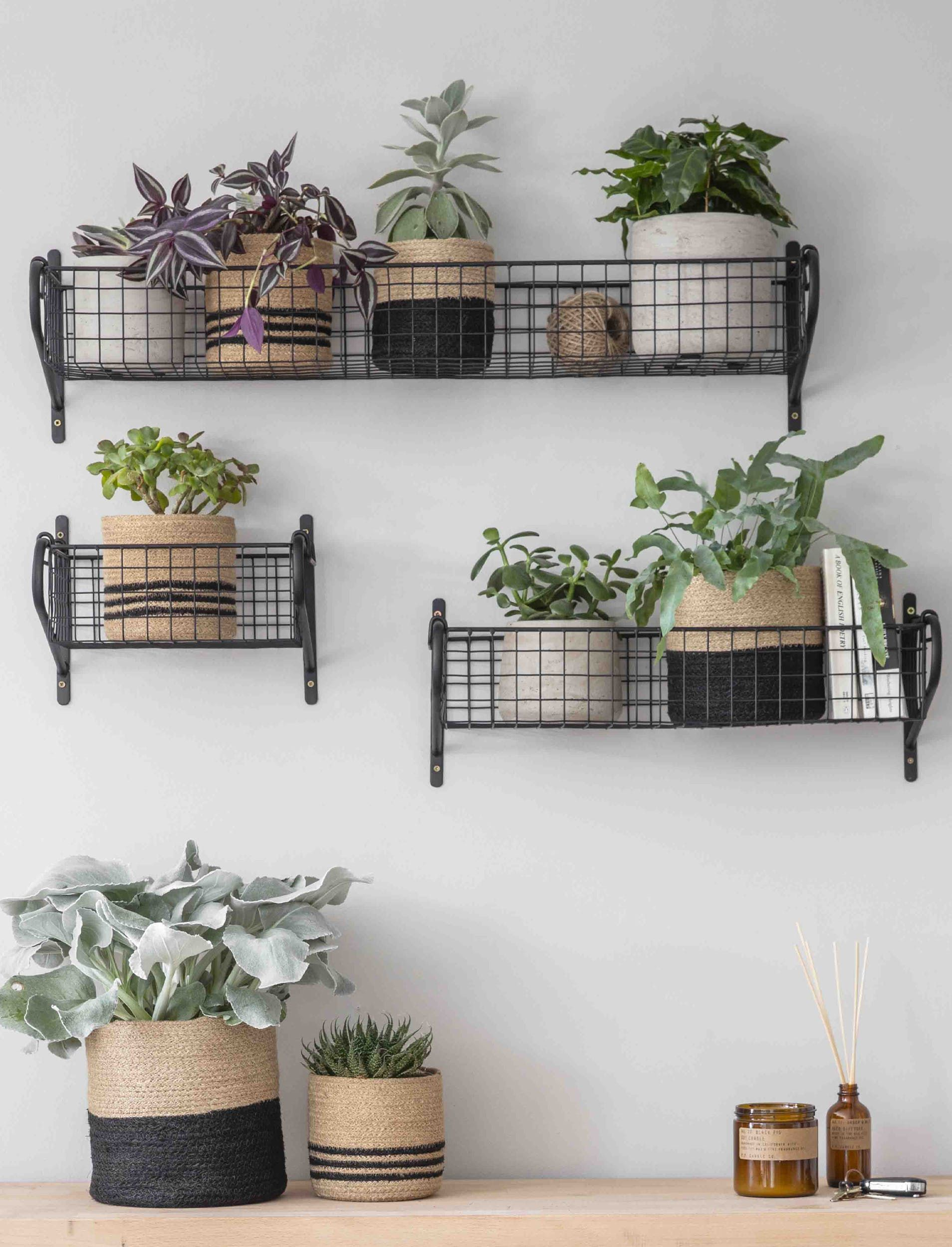 Garden Trading Small Powder Coated Steel Basket Shelf - Trouva