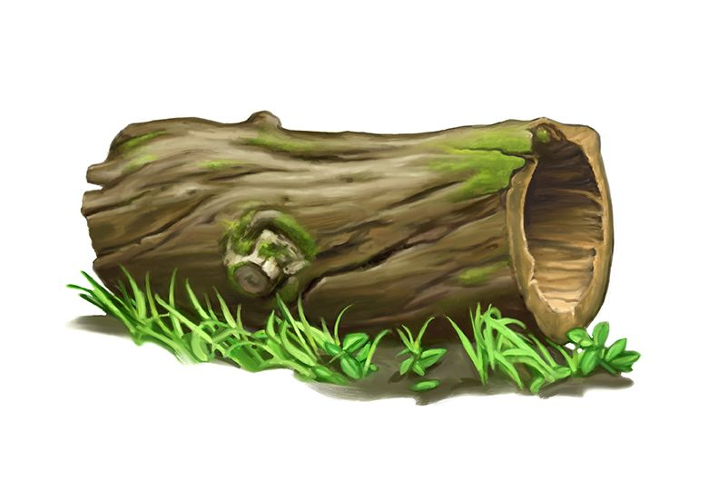 Tree Log Clip Art