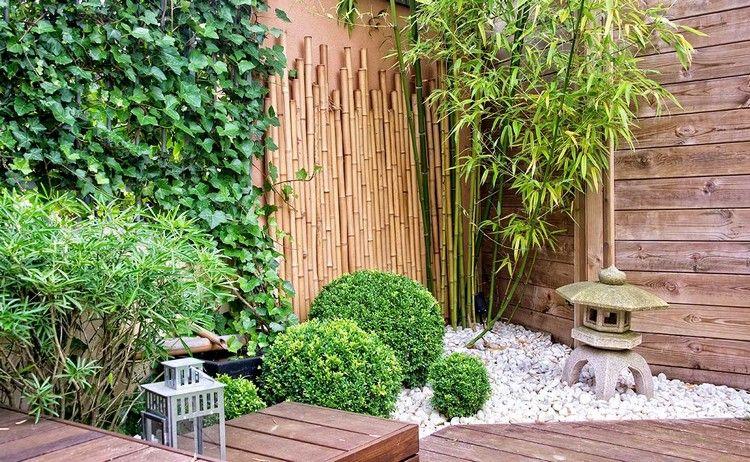 bambus buchsbaum hecken bepflanzung kleiner japanischer garten ...