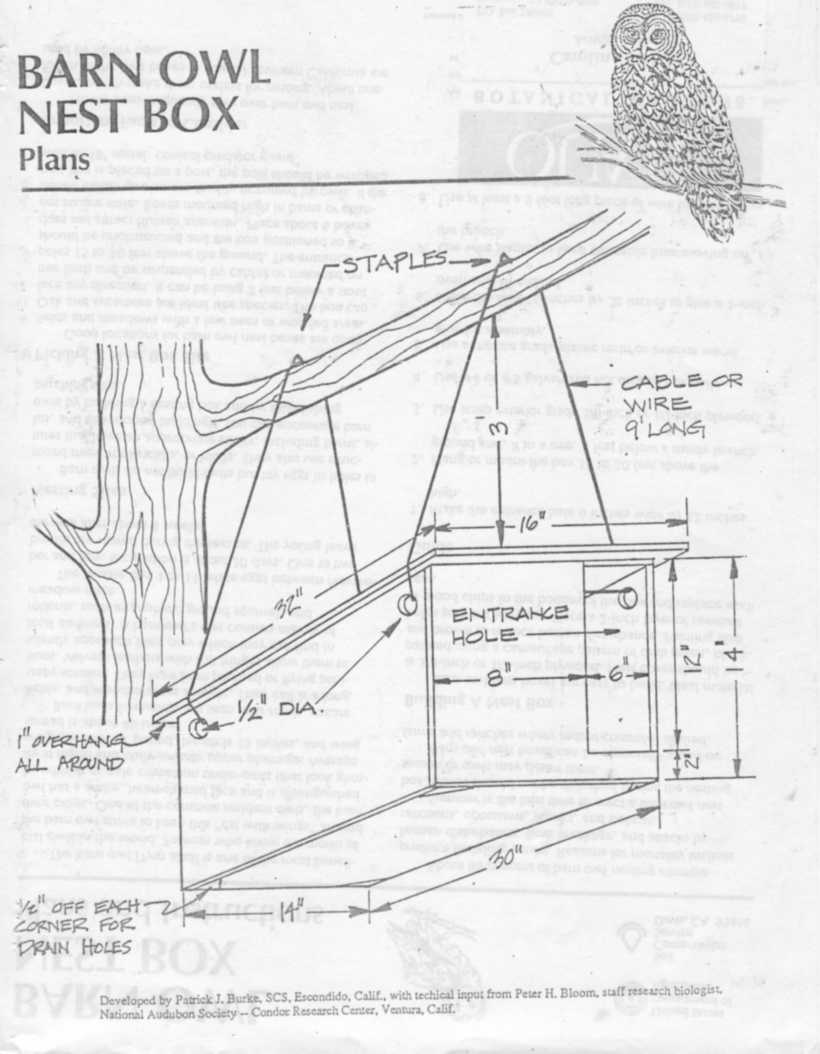 Build A Barn Owl Nesting Box To Encourage Barn Owls In Your Area Part 1 Outdoor School Owl Nesting School Curriculum