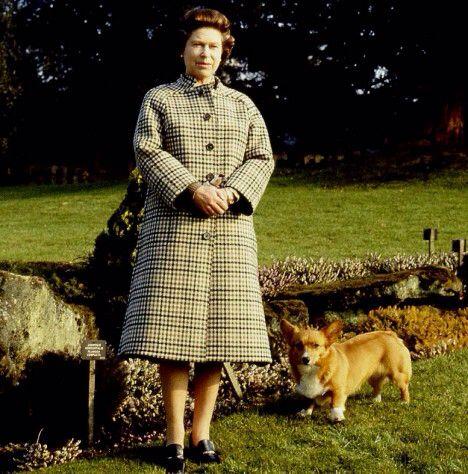 Sandringham Queen Elizabeth and Corgis