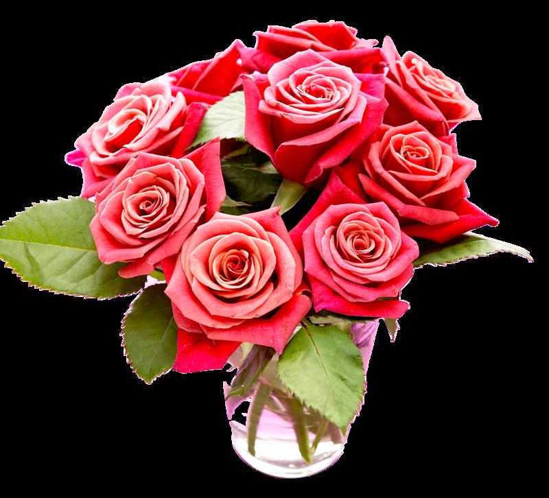 Букеты роз для фотошопа на прозрачном фоне, москве цветы хризантемы