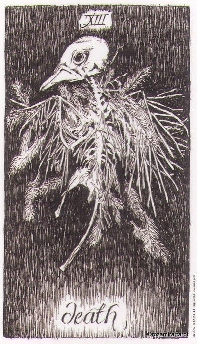 Image result for the wild unknown tarot death card
