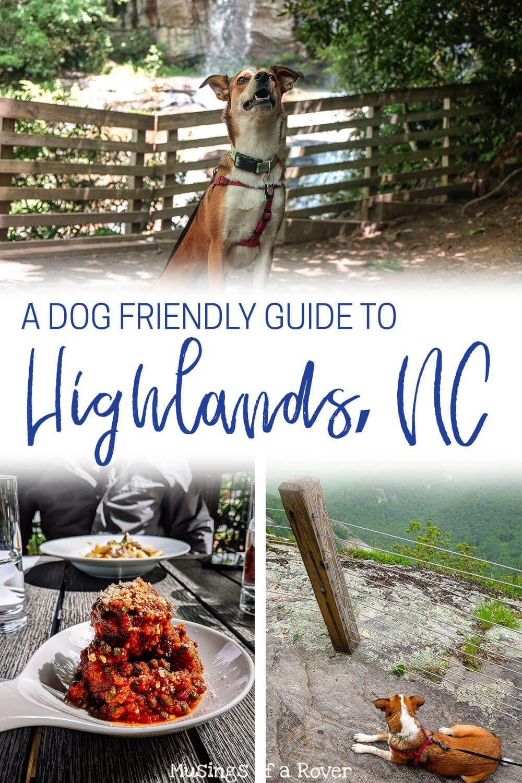 ba09c50b4a8ce479ad363e6070c04b68 - Magnolia Plantation And Gardens Dog Friendly