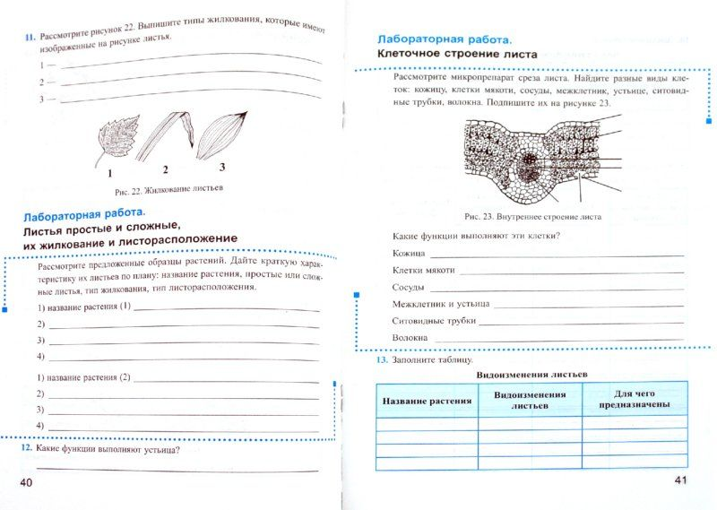 Домашняя работа по обществознанию 7 класс к рабочей тетради кравченко певцова