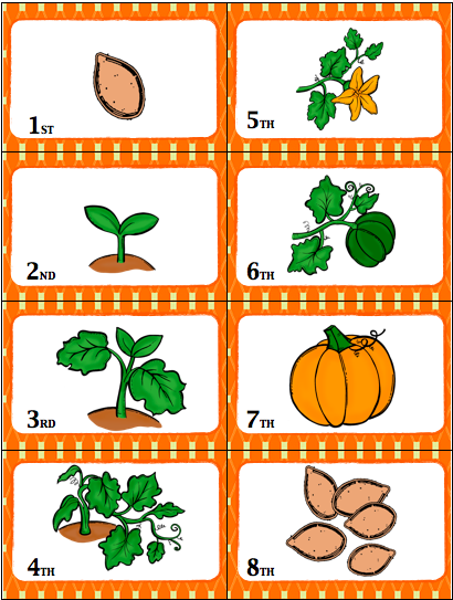 graphic relating to Life Cycle of a Pumpkin Printable called card sport - entertaining path in the direction of evaluate the lifestyle cycle of a pumpkin