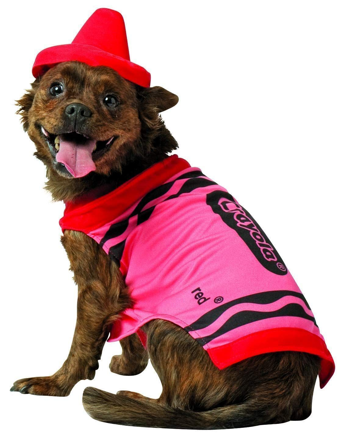 Dog Halloween Costumes Halloween Costumes Hallo In 2020 With