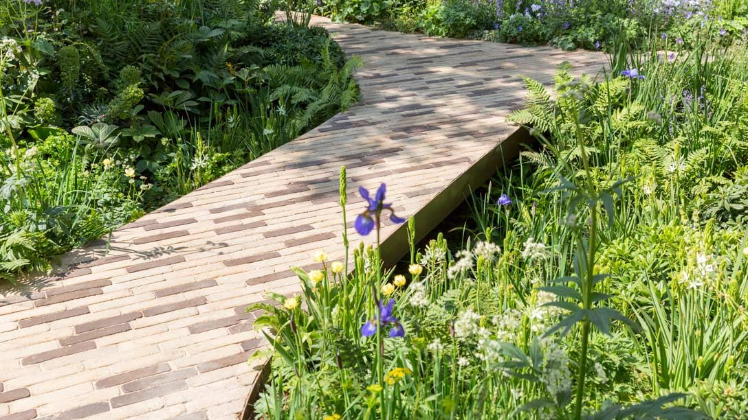 RHS Feel Good Garden (With images)   Chelsea flower show ...