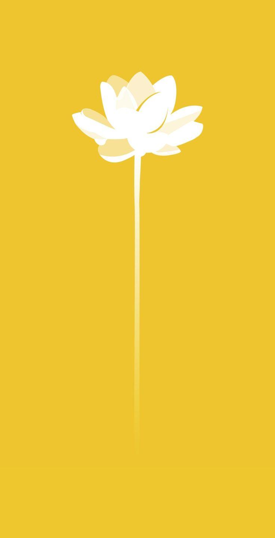 Yellow Quenalbertini Mustard Yellow Flower Poster Bella Secret